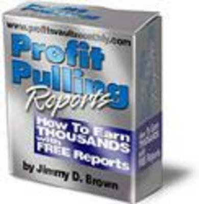 Product picture Profit Pulling Reports